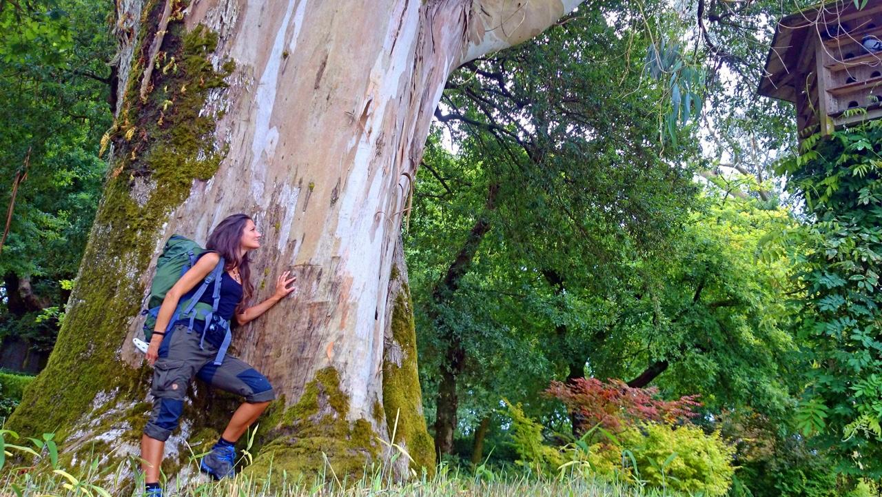 Sandra Exl bei einem großen Baum