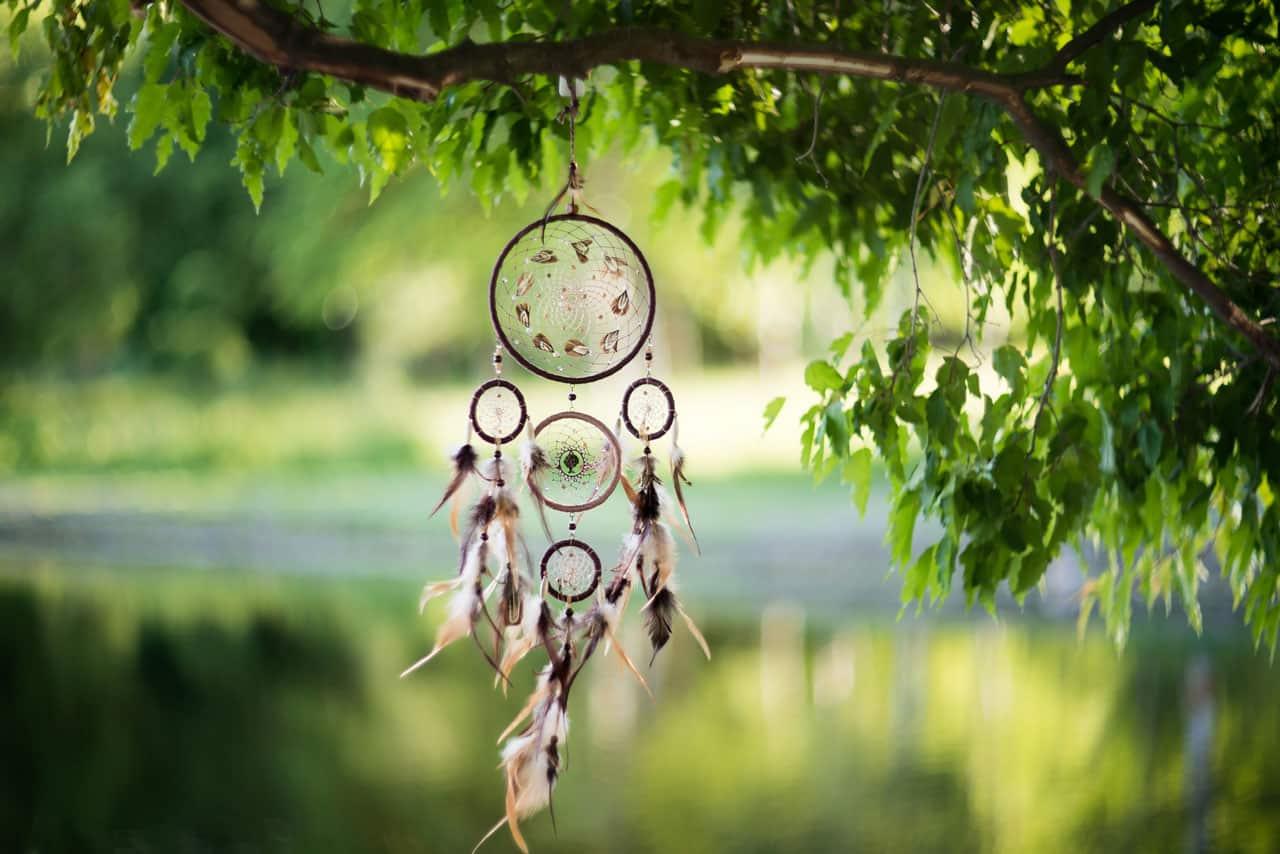 Ein Traumfänger auf einem Baum und im Hintergrund ein Teich
