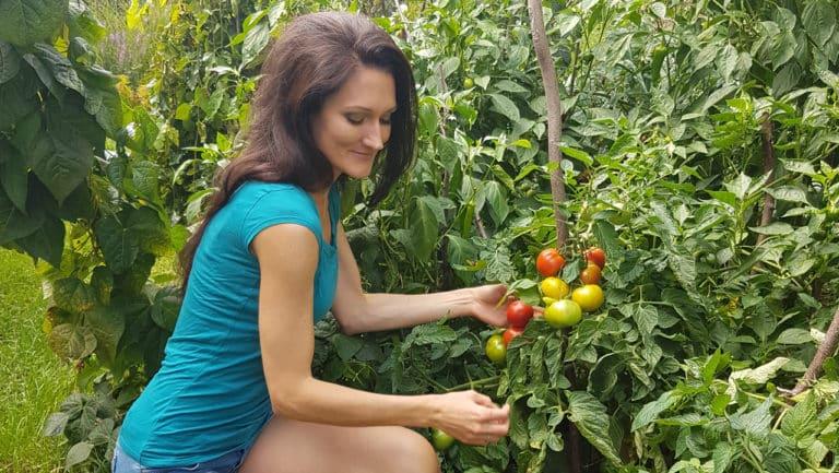 Sandra Exl im Garten mit Tomaten